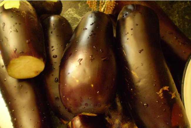 Как вкусно и быстро приготовить баклажаны на зиму