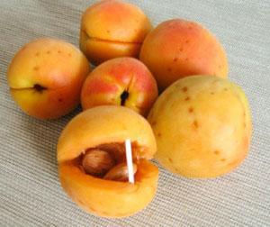 Секрет абрикосового варенья с косточкой