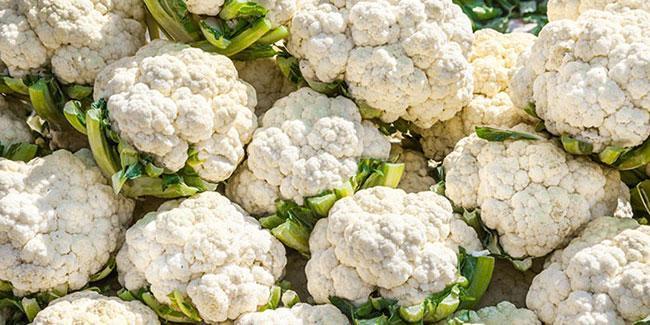 Отбор цветной капусты для заморозки
