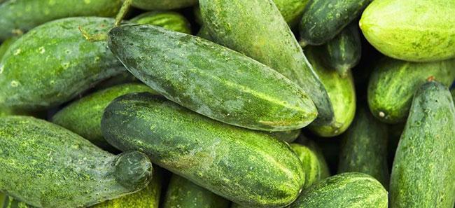 Как выбрать огурцы для салата