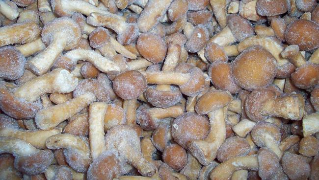 Заморозка грибов в сыром виде