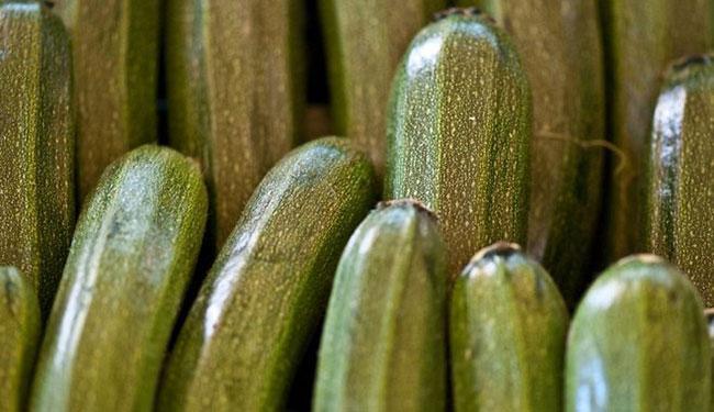 Как выбрать подходящие кабачки для икры