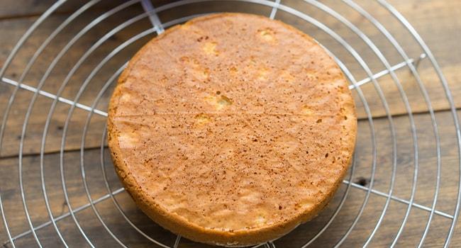 Готовый корж для торта Колибри