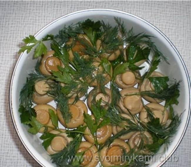 В салат лесная поляна поверх грибов кладем свежую залень