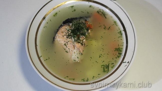 Готовый рыбный суп из красной рыбы.