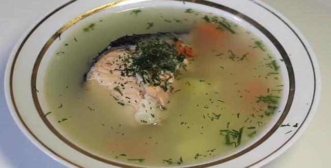 Пошаговый рецепт приготовления рыбного супа из семги