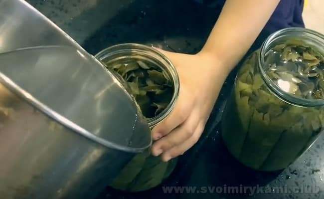 Этот рецепт поведает, как консервировать виноградные листья для долмы.