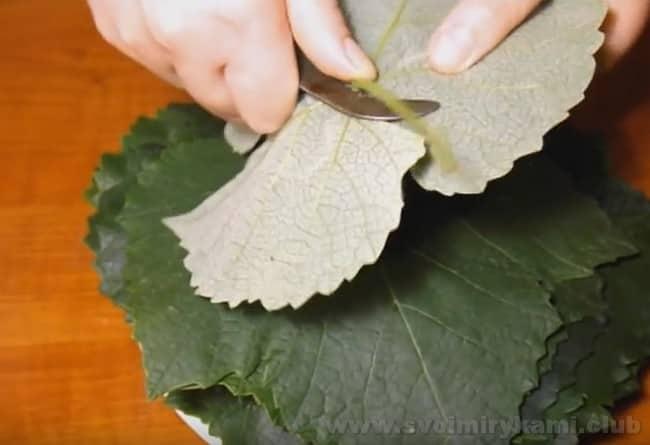 Еще один способ того, как приготовить виноградные листья для долмы - засолить.