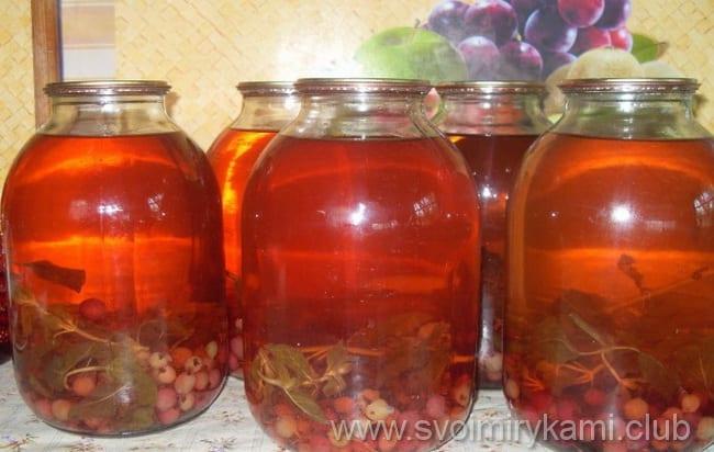 Учимся готовить компот из свежих ягод