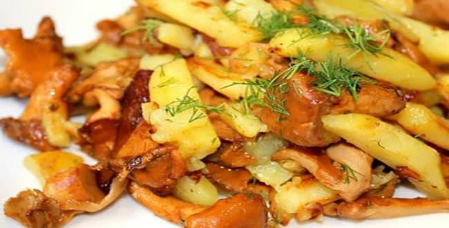 Пошаговые рецепты приготовления жареных лисичек с картошкой