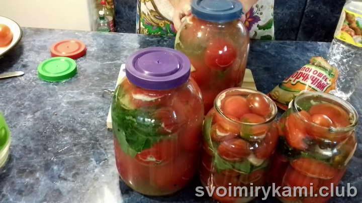 помидоры под капроновой крышкой